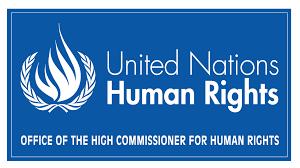 UN Commissioner In Asking Access  to Kashmir Is Not Blasphemous